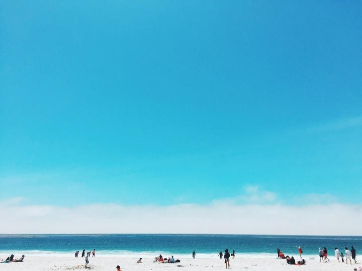 Photo Diary: Monterey